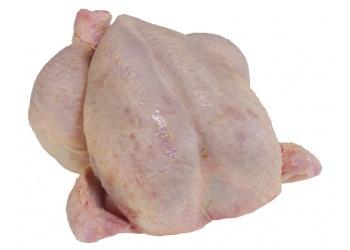 Kippen vers